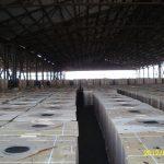 битум, Clovertainer - технология охлаждения